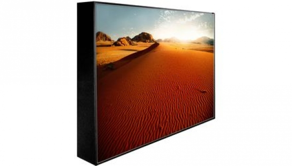 Peerless 55'' Extreme Outdoor Display IP68 Portrait