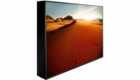 Peerless 55'' Extreme Outdoor Display IP68 Landscape